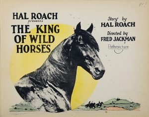 """Rex as """"The King of Wild Horses"""""""